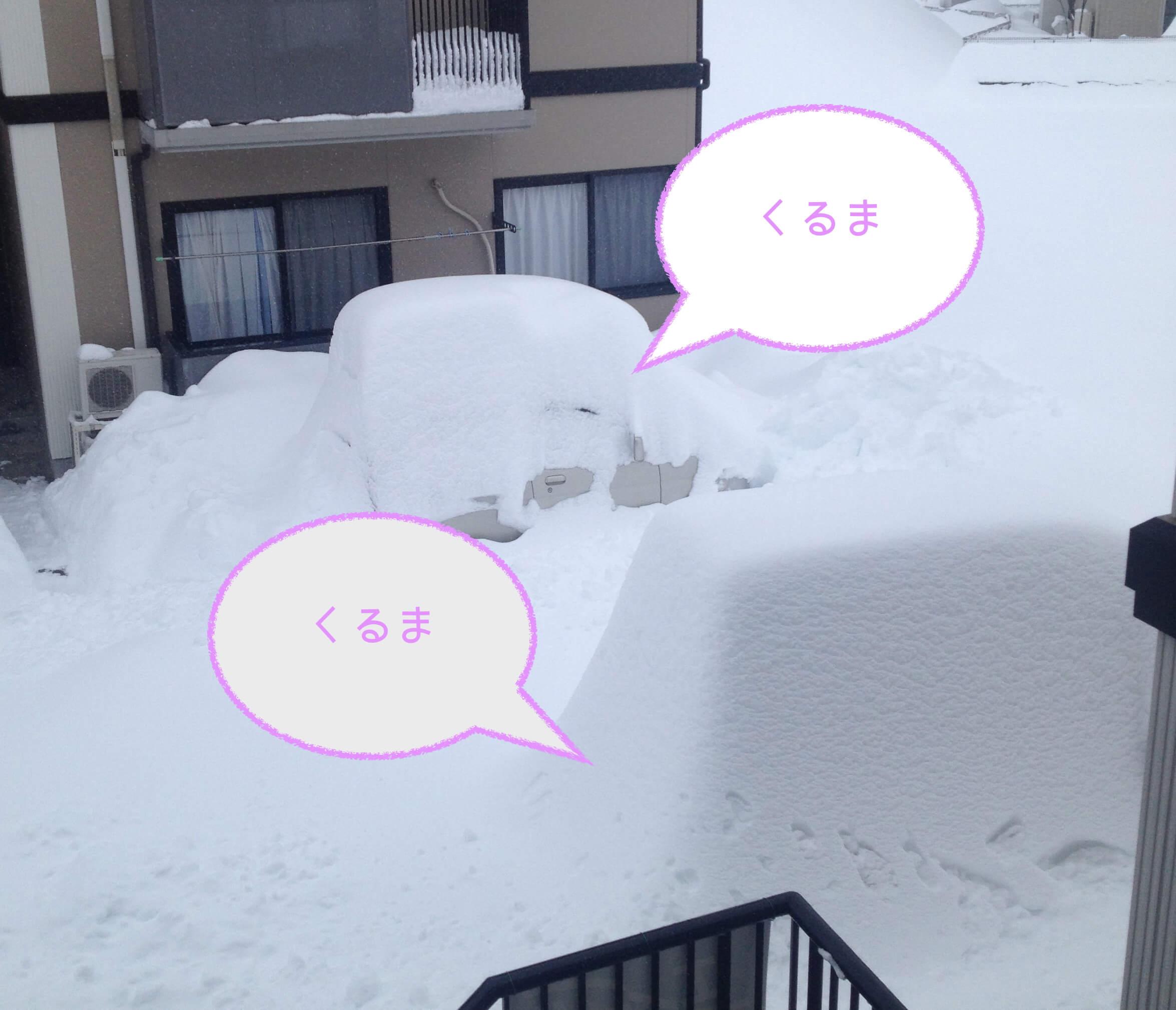未曾有の大雪に学んだ!「備えあれば憂いなし」という教訓を活かしてみようと思う