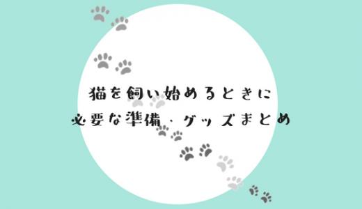 【保存版】猫を飼い始める時に必要な準備・グッズまとめ